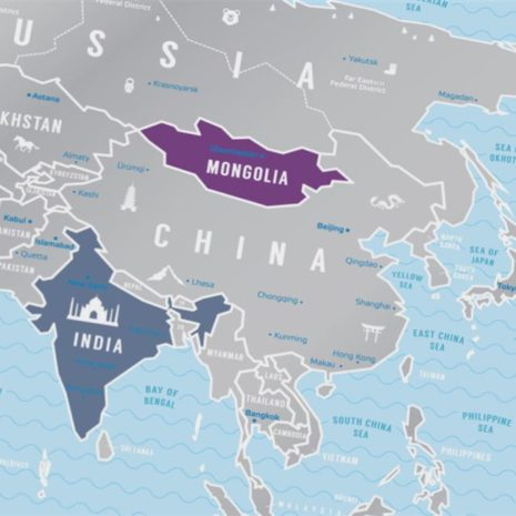1dea Travel Map Silver World 009