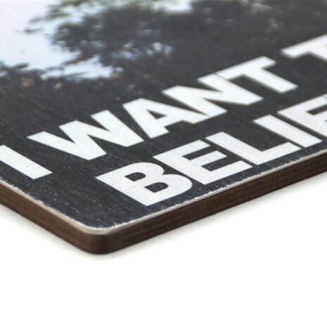 "Постер ""The X-Files. I want to believe"""